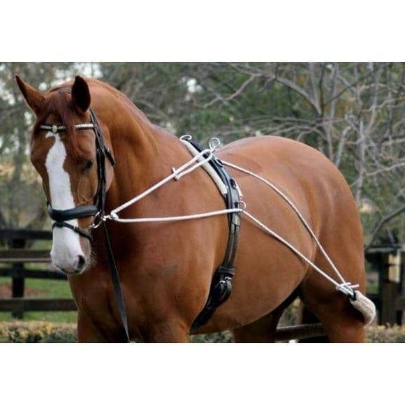 Zilco Lunge Training System Training Aids - Breastplates, Martingales, Running Reins etc.