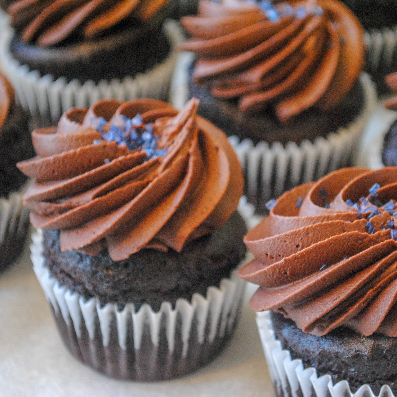 Vegan Chocolate Cupcakes with Chocolate Frosting