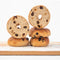 gluten-free cinnamon raisin bagels
