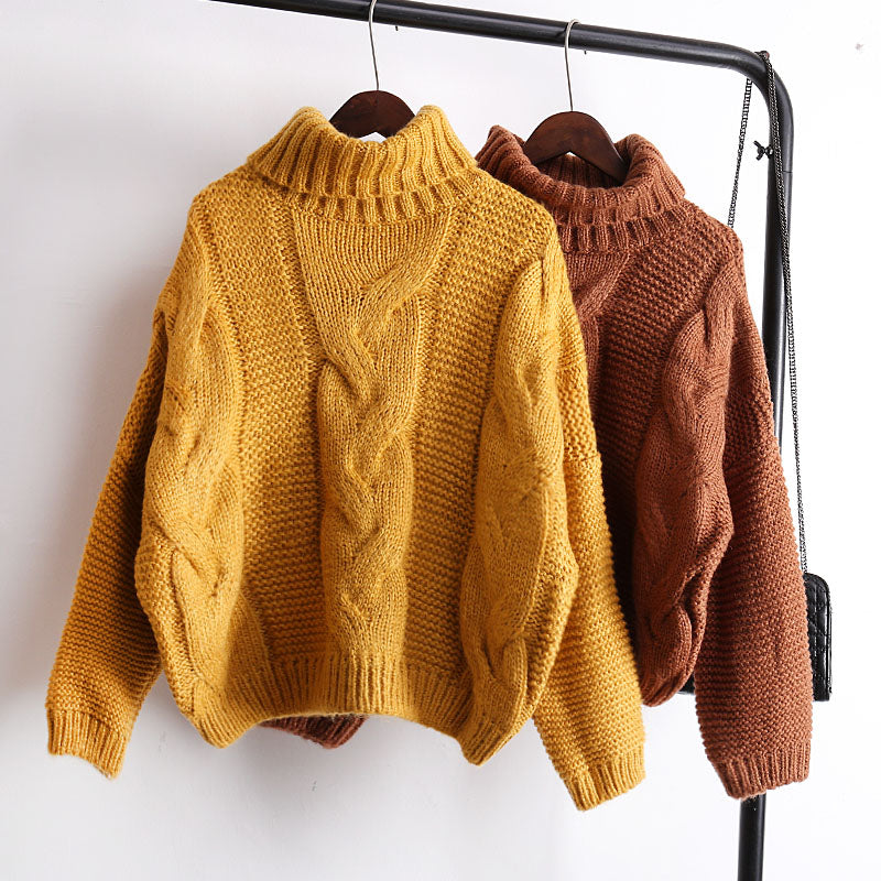 Cozy Multi-Color Turtleneck Sweater