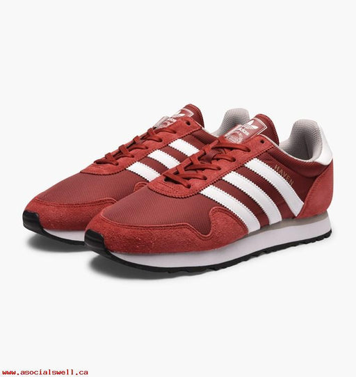 Haven Mystery Red/Footwear white-Clear Granite