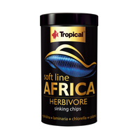 Tropical Soft Line Africa Herbivore