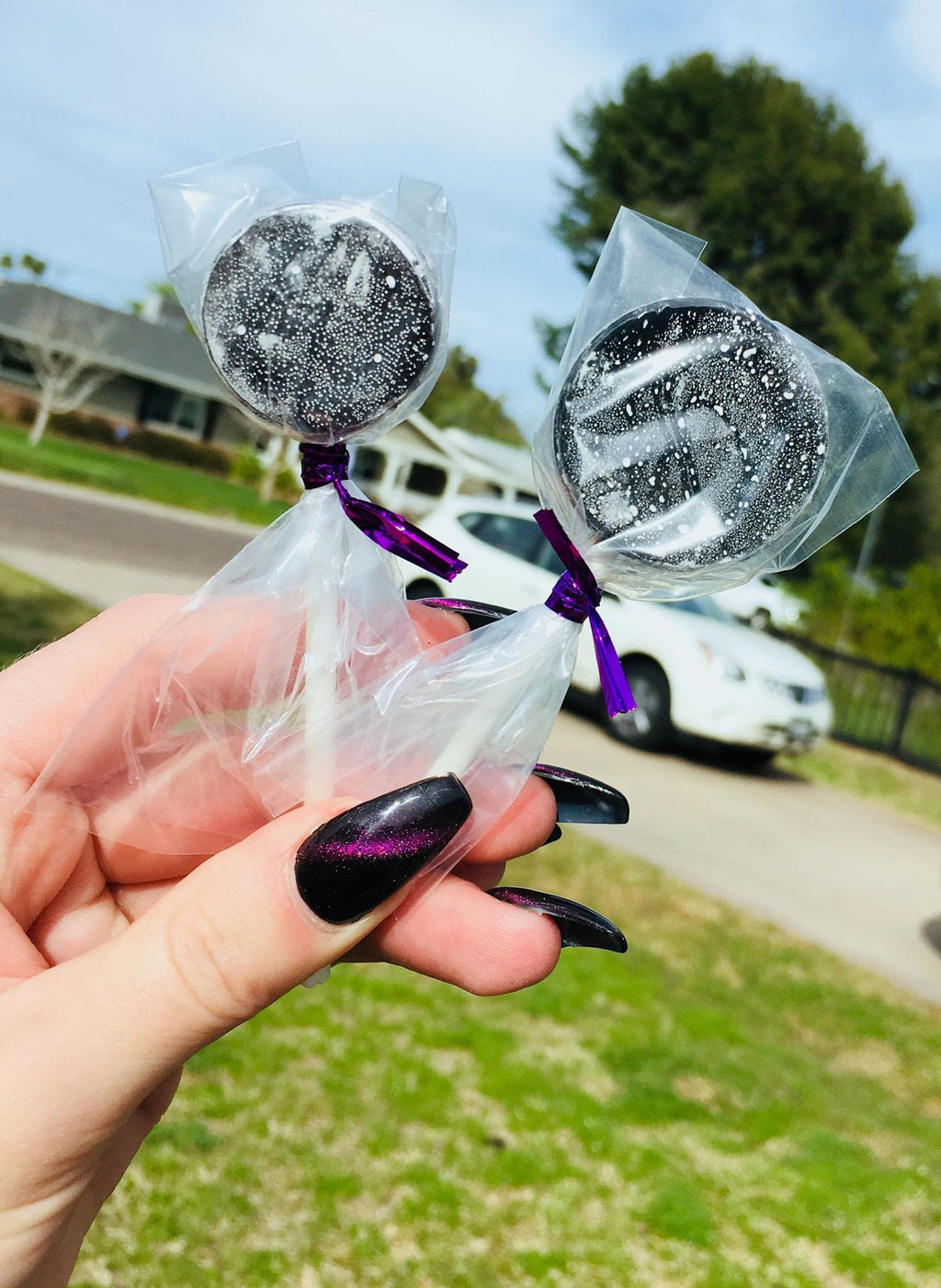 Elderberry Lollipops (15 count)