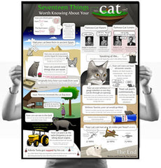 17 Things Worth Knowing About Your Cat Poster