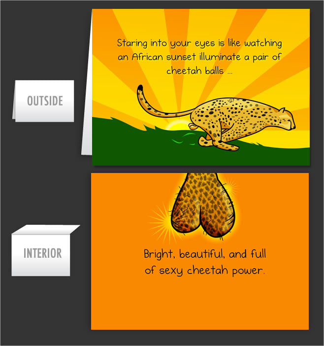 Cheetah Balls Greeting Card 10 The Oatmeal – The Oatmeal Birthday Cards