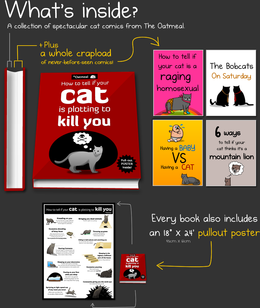 the oatmeal how to tell if your cat comic
