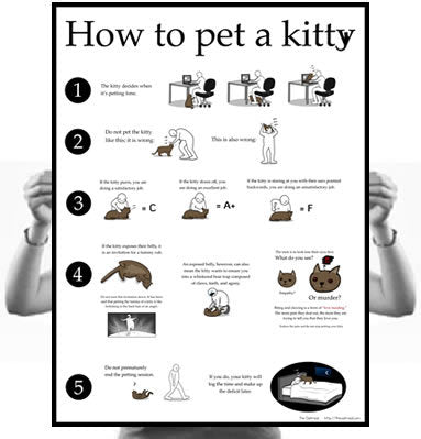 How to Pet a Kitty Poster