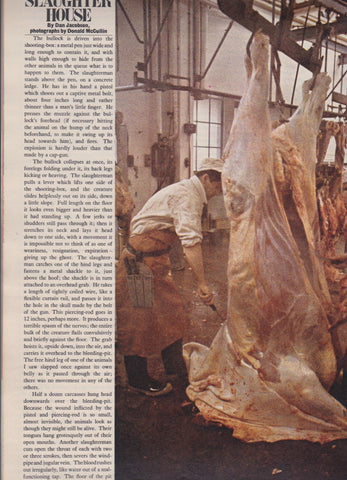 Don McCullin - Slaughter House - The Sunday Times Magazine