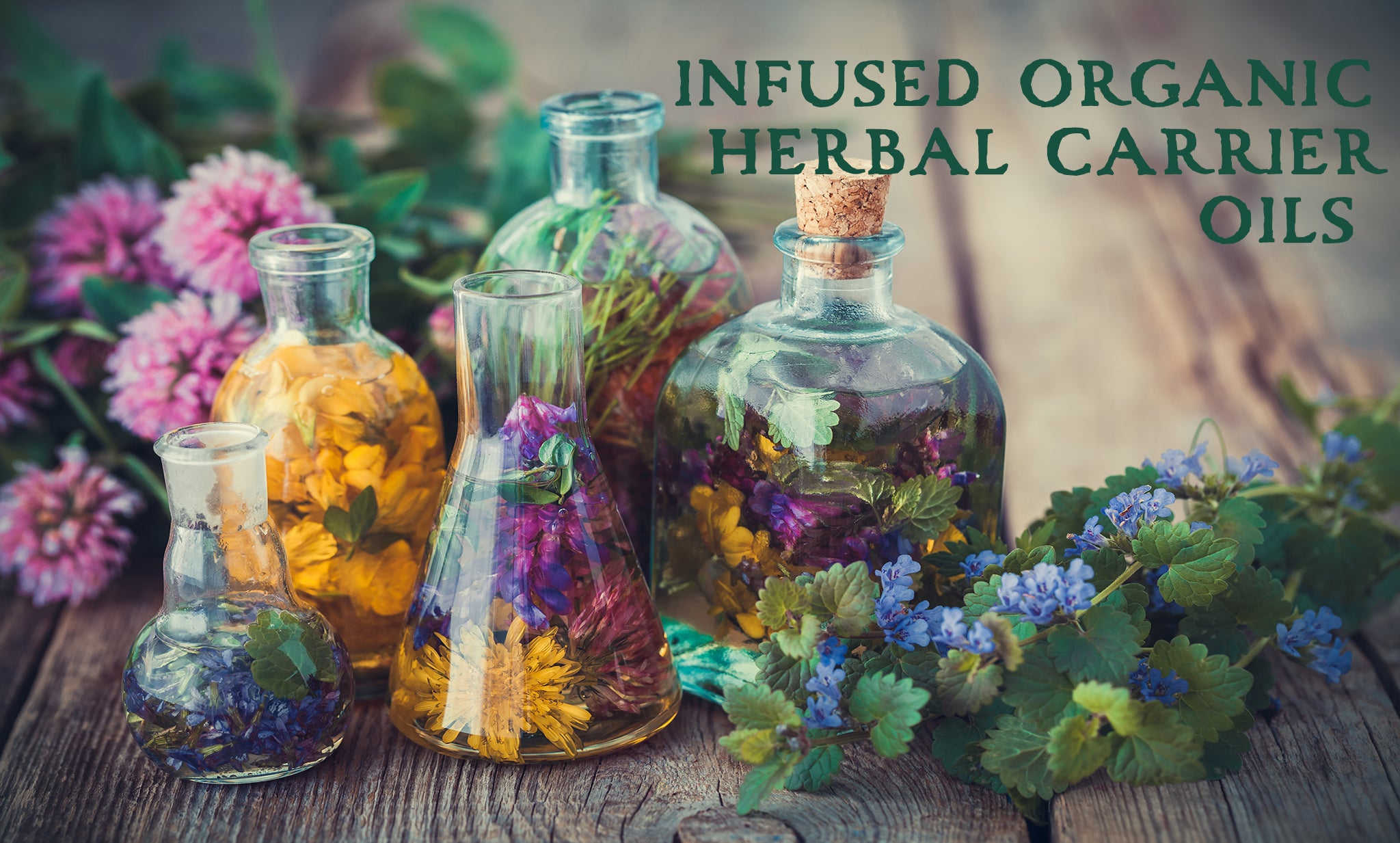 certified organic plant-based vegetable infused carrier oils by Wingsets