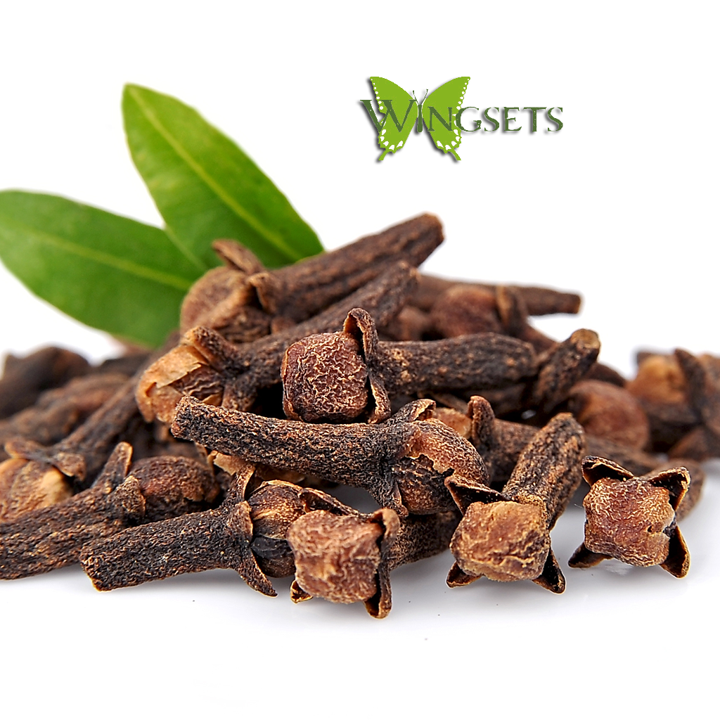 clove buds for essential oil steam distillation, organic, Eugenia caryophyllata