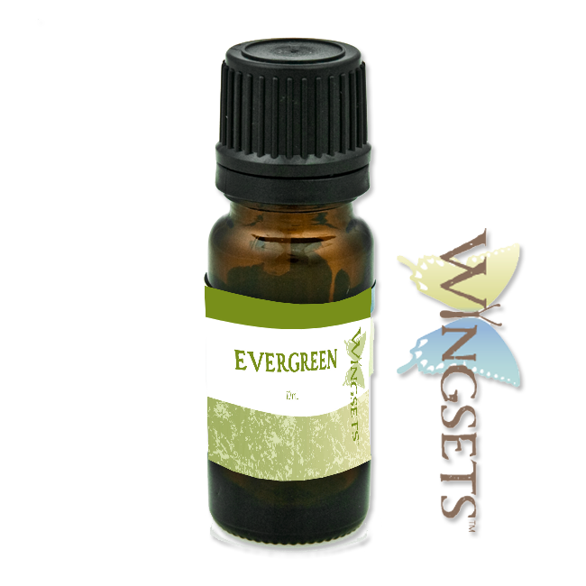Evergreen Essential Oil Blend