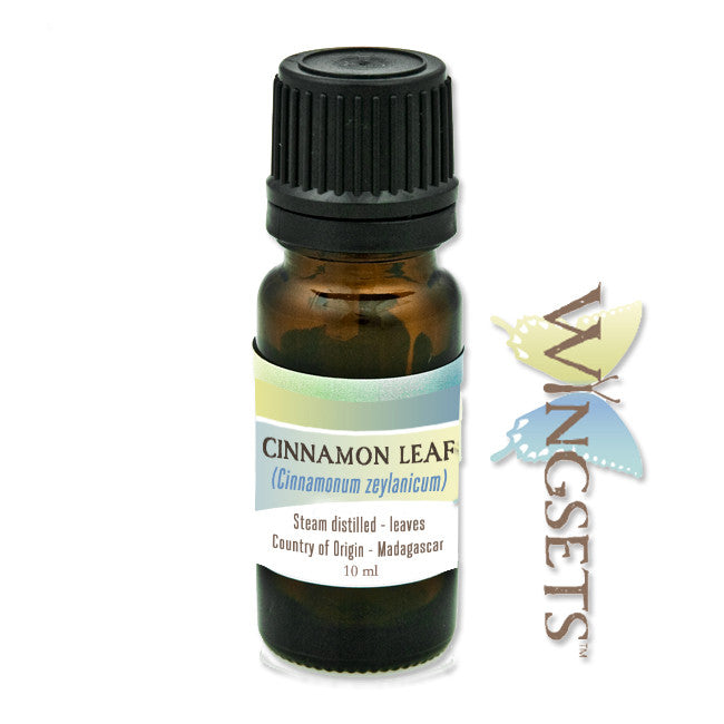 cinnamon leaf essential oil, Madagascar, Cinnamomum zeylanicum, ethically sourced, steam distilled