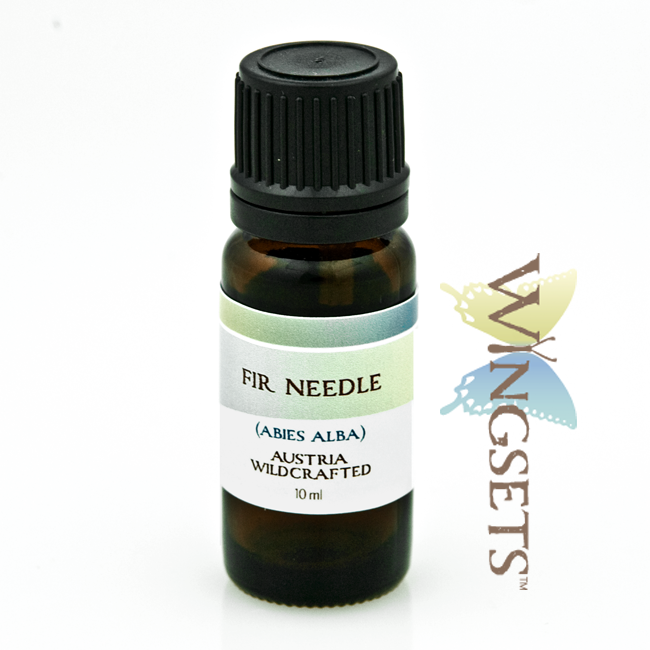Fir Needle (Abies alba) – Wildcrafted