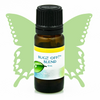 Herbal Insect Repellent Essential Oil Blend