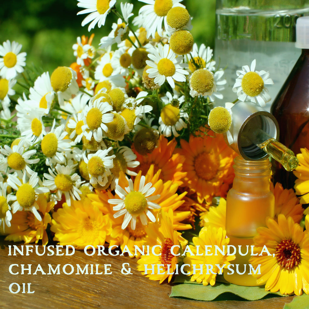 organic flowers of calendula and chamomile for infused oil