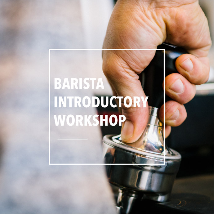 Barista Workshops