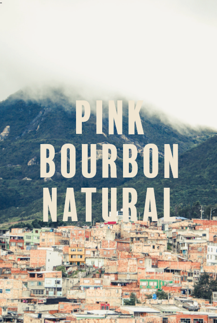 Colombia Pink Bourbon Daniel Cuellar Natural - Filter - 200g/1kg