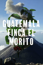 Load image into Gallery viewer, Guatemala Finca El Morito- 250g/1kg