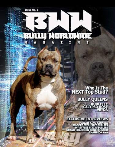 Bullyworldwide  Magazine Issue #3