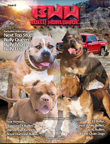 Bullyworldwide Magazine Issue #6 Digital