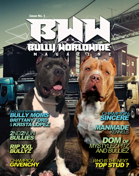 BWW Magazine Issue #1 (Digital )
