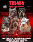 Bullyworldwide Magazine Issue #4