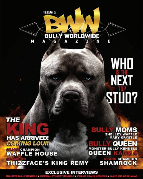 BWW Magazine Issue #2 (Digital)