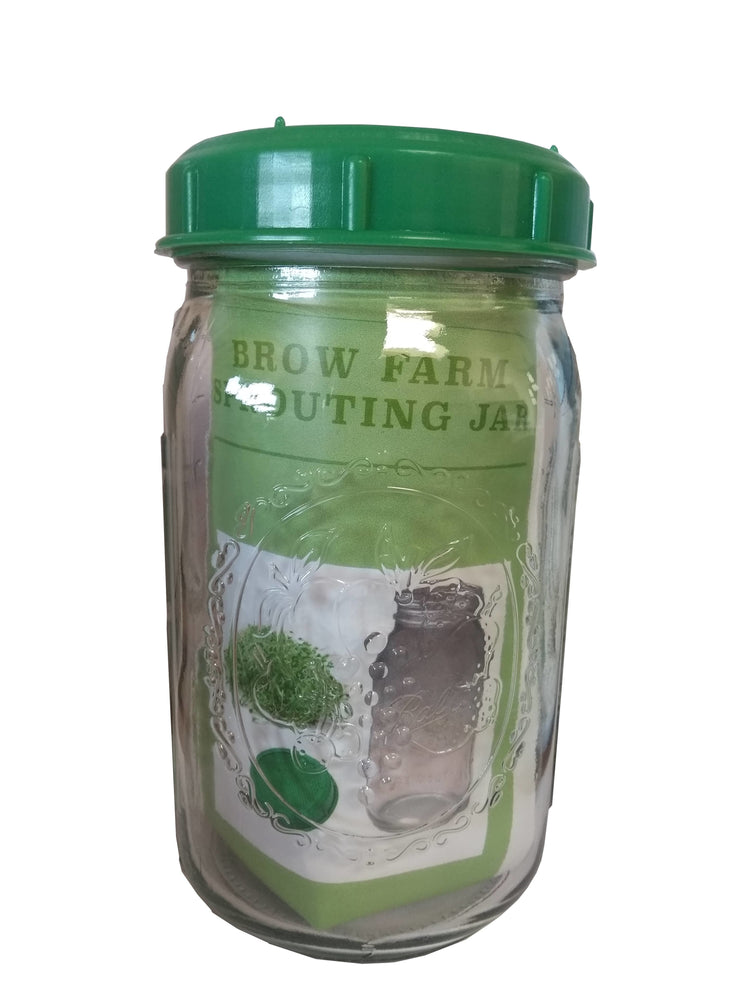 Sprouting Jar Seed Sprouter With Lid, BPA FREE, with Rape and Mustard seeds