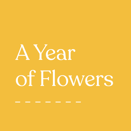 Gift Subscription: A Year of Flowers
