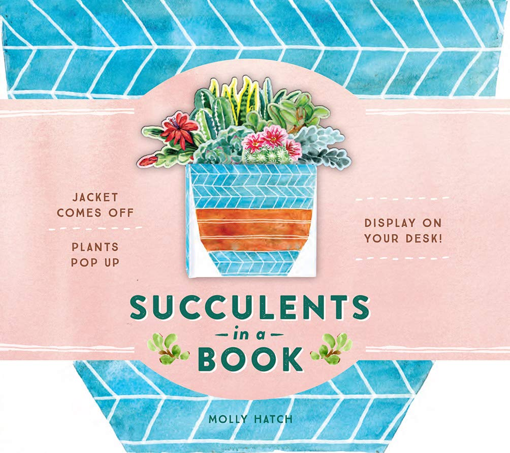 Succulents in a Book: Popup Display