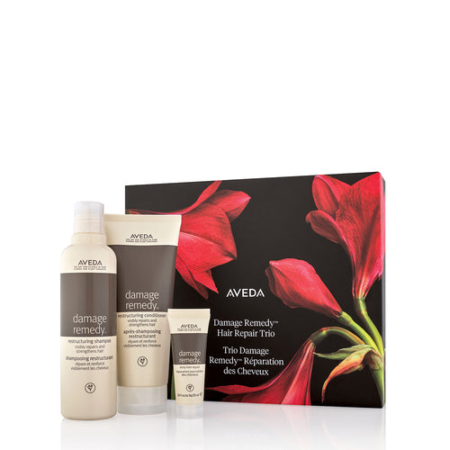 aveda kit damage remedy hair repair beauty art mexico