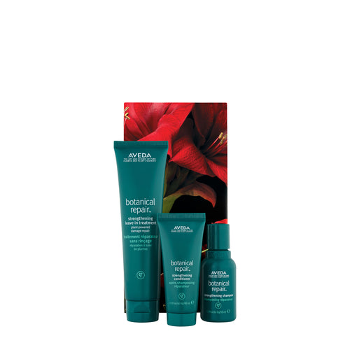 aveda botanical repair trio beauty art mexico