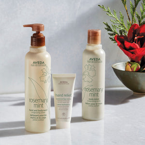 aveda rosemary mint hand & body wash back bar beauty art mexico