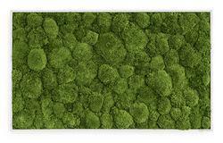 Moss picture bale moss 100x60 cm
