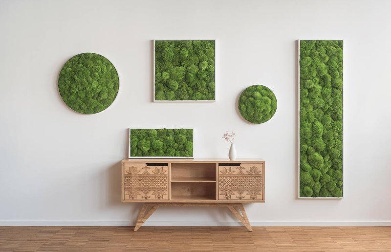 Moss picture bale moss 55x55 cm