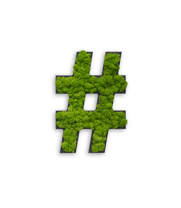 "Reindeer moss pictogram ""Hashtag"""