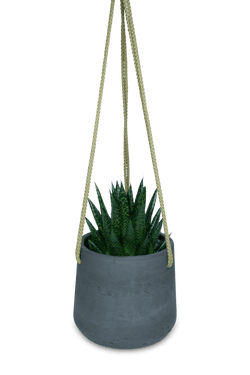 Set - Gasteria D Due with hanging standoff black