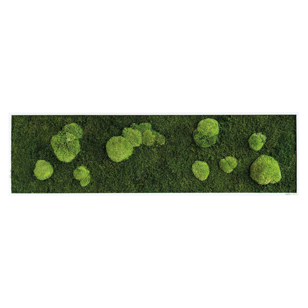 Moss picture forest and bale moss 140x40 cm