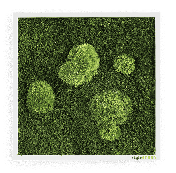Moss picture forest and bale moss 35x35 cm