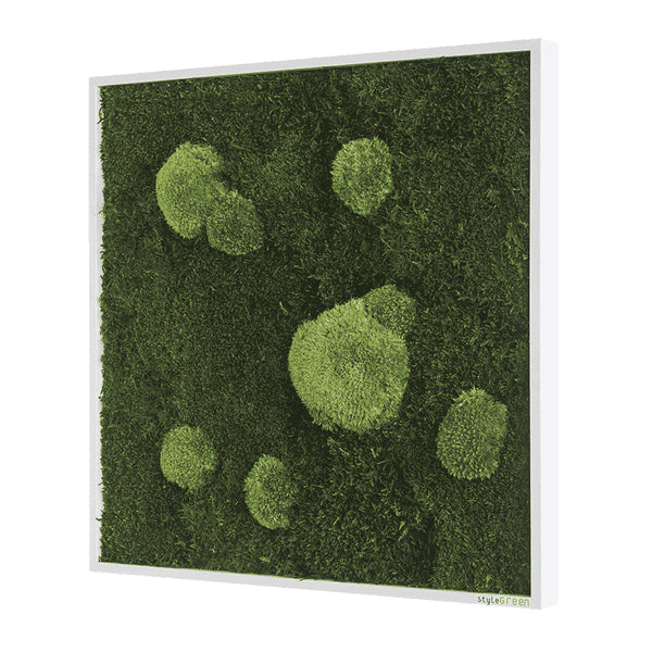 Moss picture forest and bale moss 55x55 cm