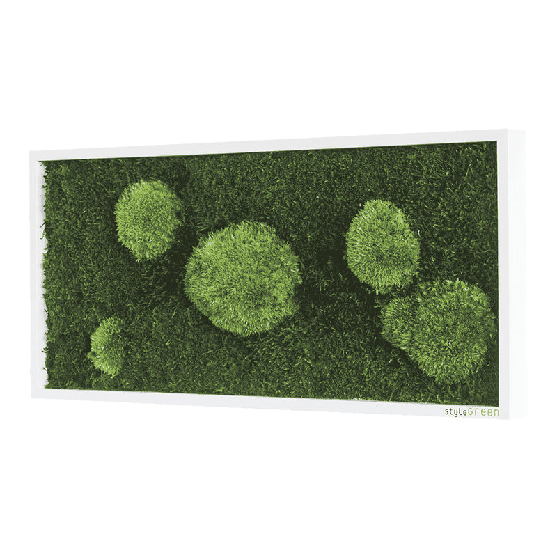 Moss picture forest and bale moss 57x27 cm