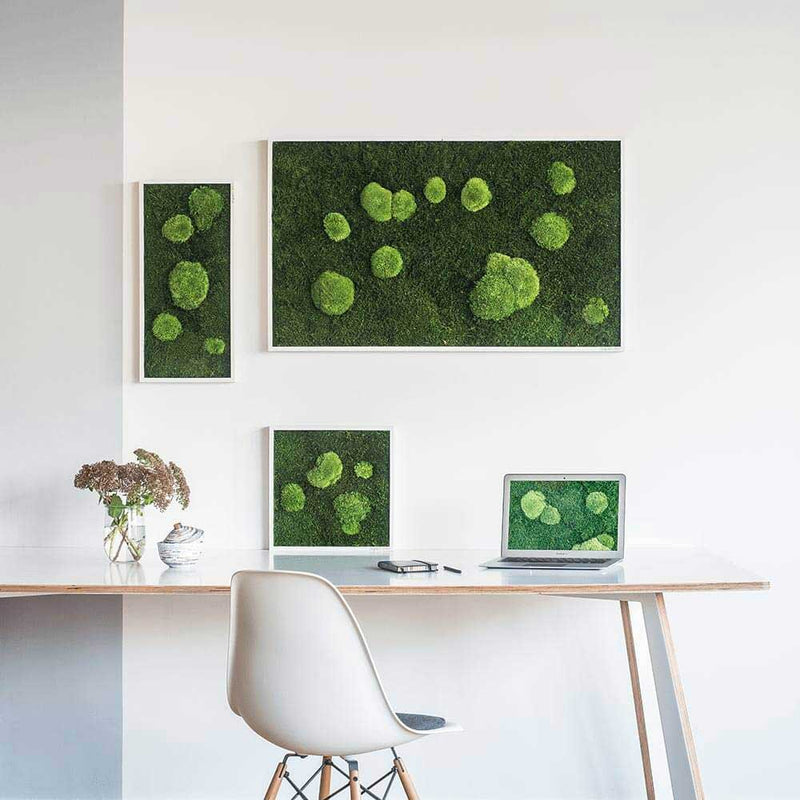 Moss picture forest and bale moss 100x60 cm