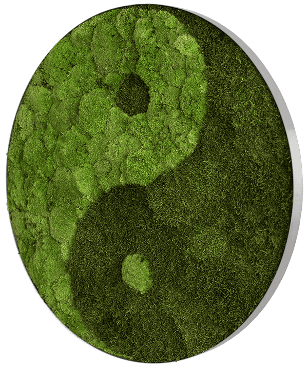Moss picture circle forest and bale moss Yin & Yang