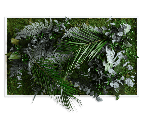 Plant picture in jungle design, white frame 60x100 cm