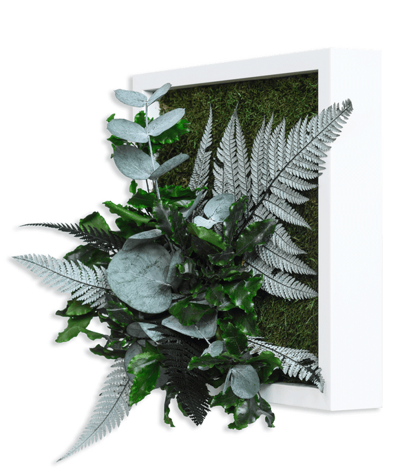 Plant picture in jungle design, white frame 22x22 cm