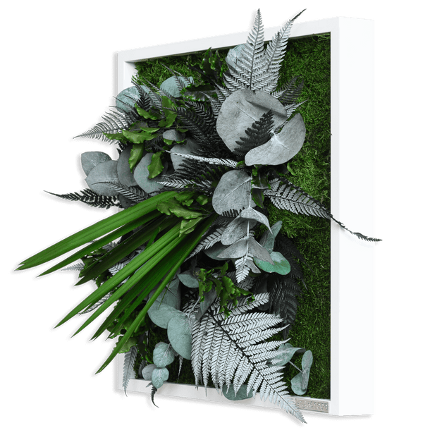 Plant picture in jungle design, white frame 35x35 cm