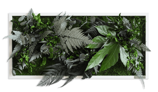 Plant picture in jungle design, white frame 27x57 cm