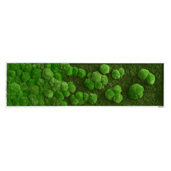 Moss picture gradient forest and bale moss 140x40 cm