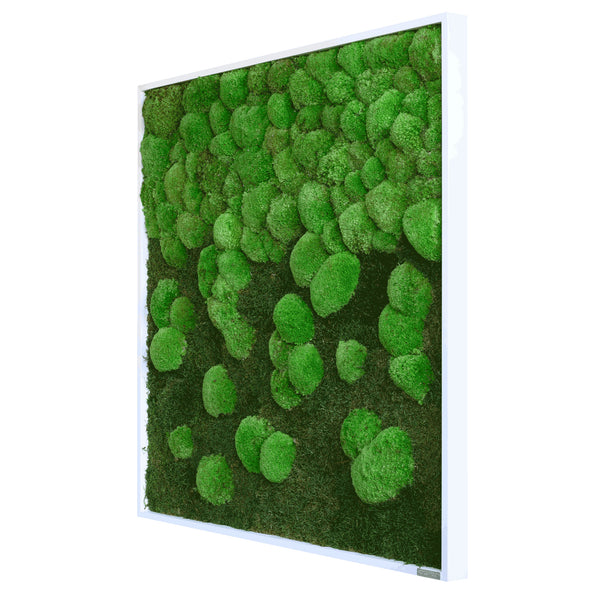 Moss picture course forest and bale moss 80x80 cm