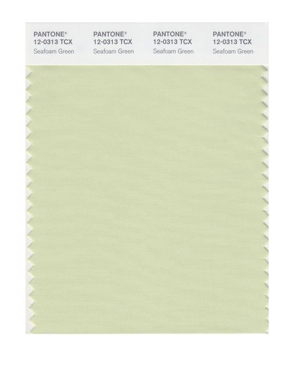 PANTONE SMART swatch 12-0313 TCX Seafoam Green